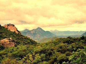 hills-tirumala